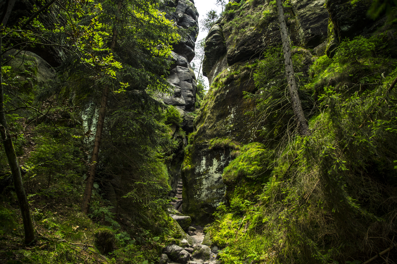 Swiss sax NP walkway thru cliffs 02- Tim Charody